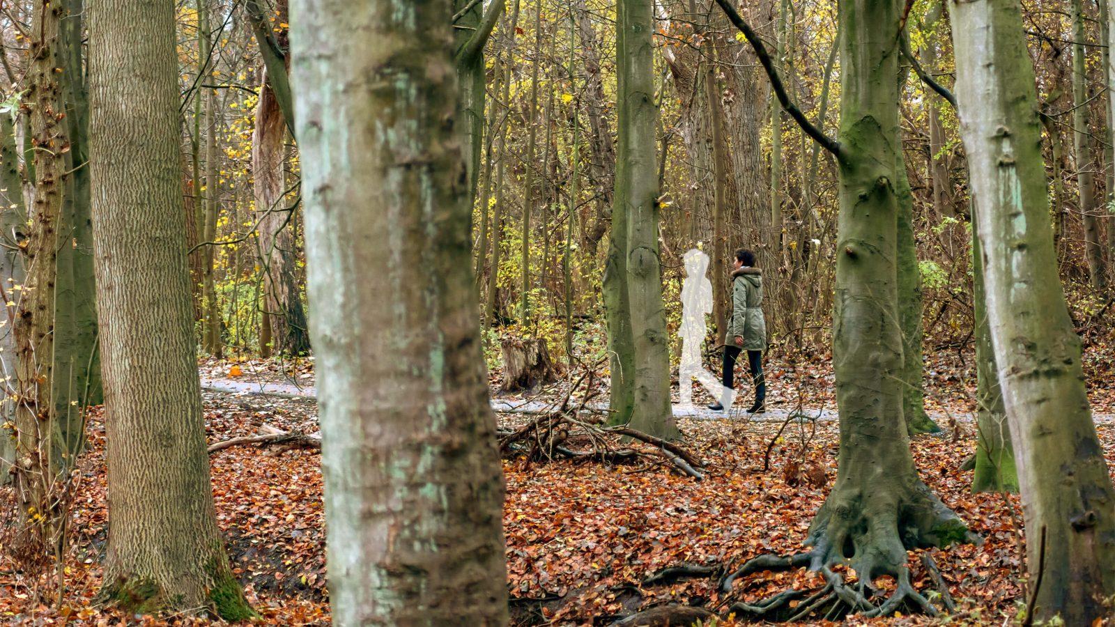 Foto van wandelcoach Claudia van Leent op een bospad. Op de foto loopt er een vrouw naast haar.